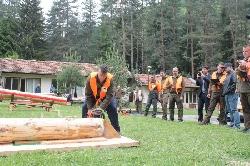 Състезание за най-добър дървосекач