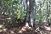 Успешен одит в горите Кюстендил