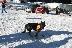 Планинските спасители в Банско нащрек заради екстремни скиори