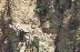 Пускат лешояди-шпиони в Кресненския пролом, ще следят заплахи